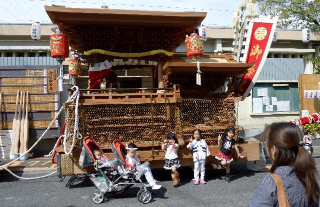 大阪 貝塚 だんじり祭り 次世代の曳き人達