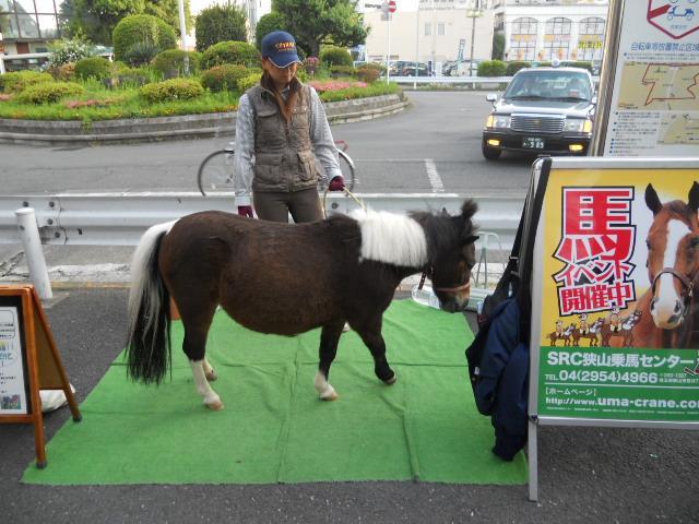 乗馬の宣伝駅前でしてました