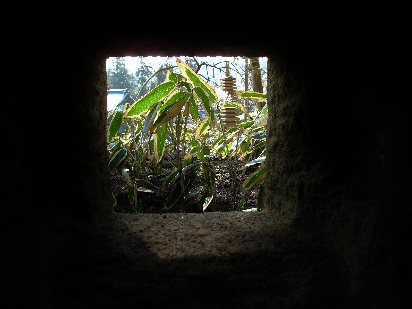 龍隠庵 灯篭からの眺め