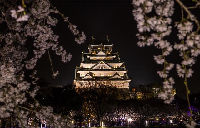 大坂城夜桜イルミナージュ2014