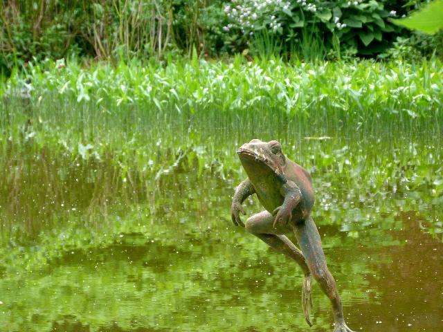 古池や、、、