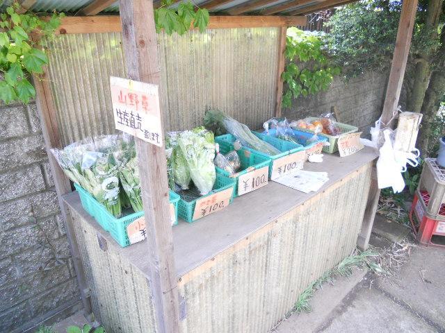 西東京市の農家の庭の生産野菜の直売所