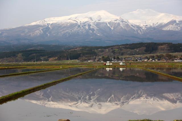 田植えを待っている鳥海山