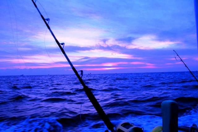 鮪釣りの日の出